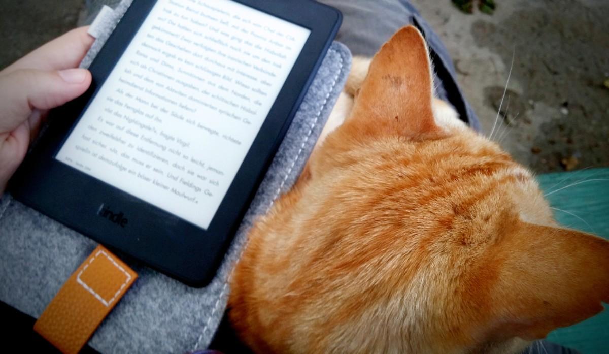 Mit dem Kindle und passender Leseunterlage in Stravklevo