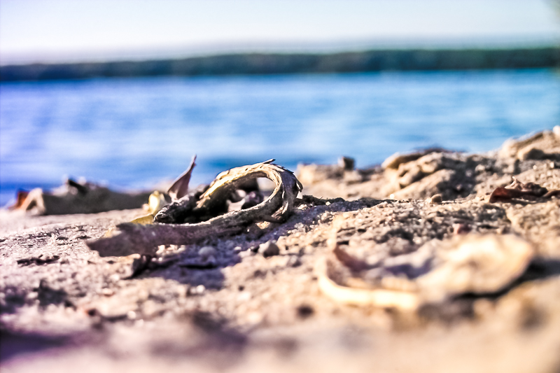 Wannsee Strand